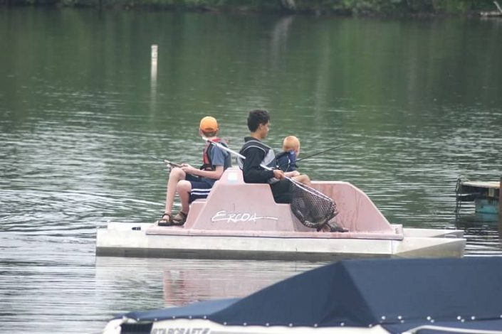 Activities - Paddle Boat Rental